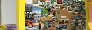 MY around the world